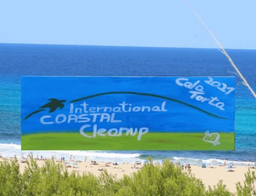 Coastal-Cleanup-2021